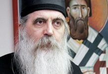 Réflexions de l'évêque de Bačka Irénée (Église orthodoxe serbe) au sujet du Concile panorthodoxe