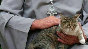 Une prière pour les chiens et les chats aura lieu dans une église près de Moscou