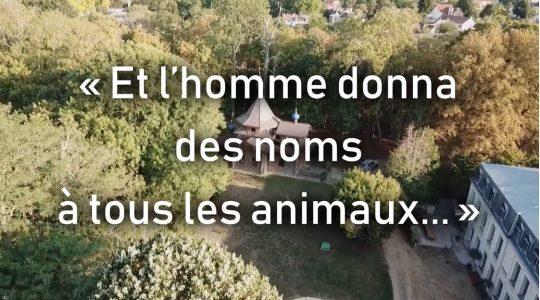 Rediffusion du documentaire « Et l'homme donna des noms à tous les animaux » sur France 2 le 18 juillet à 9h30