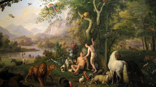 «Le christianisme et l'animal»